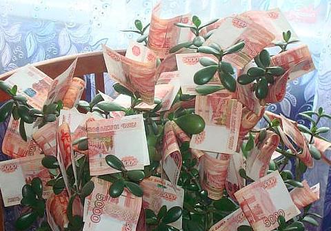 seo денежное дерево
